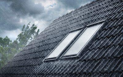 Zeit für Dach Profis